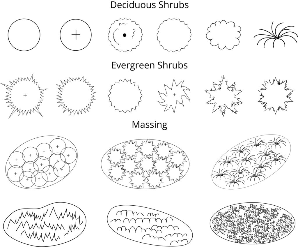 Landscape Design Symbols Shrubs and Massing